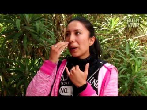 .:SALINAS:. - MUJER SALINERA