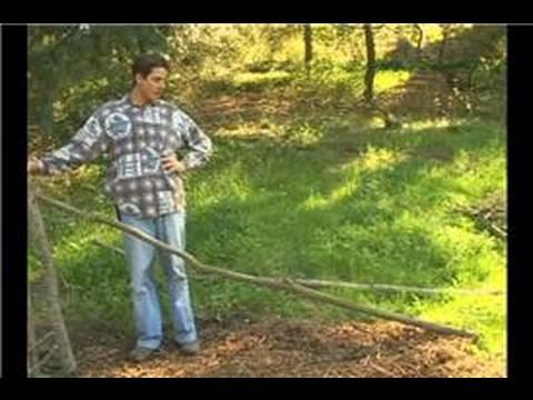 How to Build a Debris Hut : How to Build a Debris Hut: Good Location