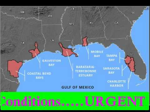URGENT GULF COAST RESIDENTS WATCH AND HELP ! !