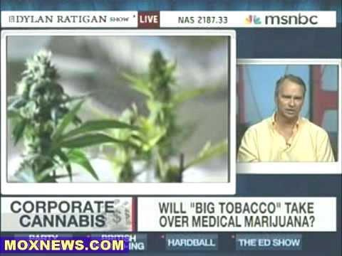 Oakland Approves Marijuana Farms