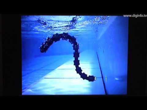 Amphibious snake robot - ACM-R5