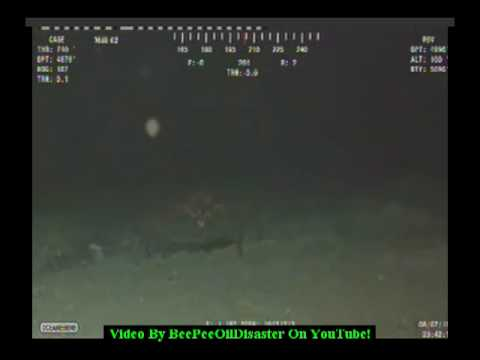 Part 1 of 2 Huge Steel Eating Creatures In The Gulf Of Mexico!