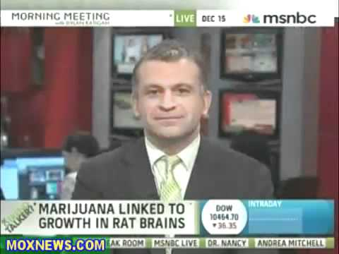 MARIJUANA PROMOTES BRAIN CELL GROWTH - BENEFITS OF WEED