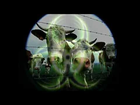 Codex Alimentarius-  Global Population Control