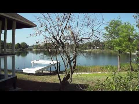 MY TREES ARE DYING 5-11-2012 CHEMTRAILS? ORLANDO FLORIDA