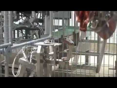 What Can be Automated, Will be Automated: Video of Automated Meat Processing Plant Without a Soul in Sight
