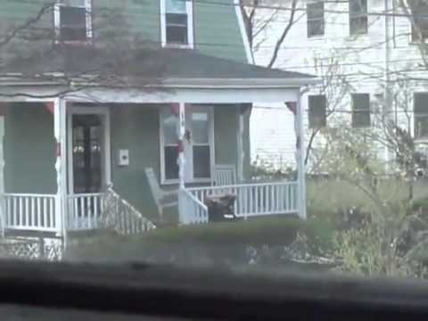Boston door to door searches by DOD, DHS and local police were not voluntary