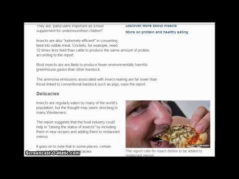 UN urges people to eat insects to fight world hunger. 5/13/2013