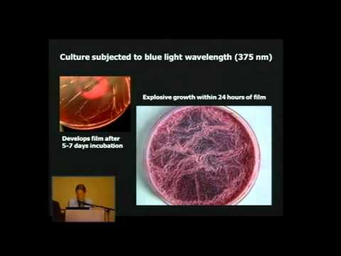 From Chemtrails to Pseudo-Life. The Dark Agenda of Synthetic Biology (FULL LENGTH VIDEO).wmv
