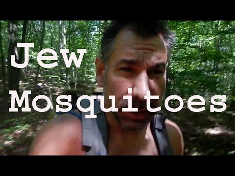 Pesky Zionist Jew Mosquitoes (Noah's Ark)