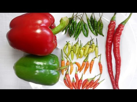 Chilli stop heart attack in 30 Seconds and prevent prostate cancer!