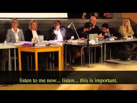 Brawl at Swedish city hall