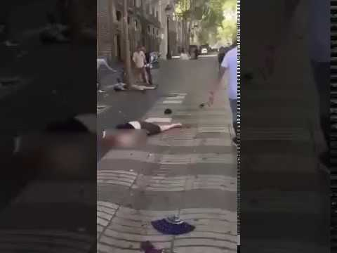 Barcelona terror attack: Multiple casualties as van ploughs into crowd at Las Ramblas
