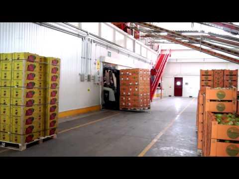 Video testimonial Agrodesert