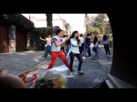 Flashmob Pedida de Matrimonio Romantica y Emotiva
