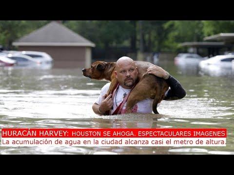 Ultima hora: Huracán harvey: Imagenes de Houston anegada, mas de 1m de altura.
