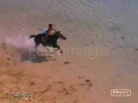 No es simplemente un caballo