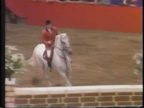 Milton: a tribute to Europe's greatest showjumper