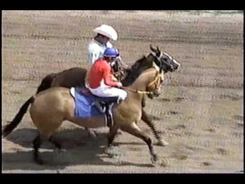 carreras de caballos - EL PAJARITO vs LA CHIHUAHUITA