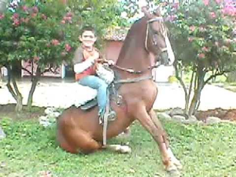 Jose Raul En la Yegua Condeza