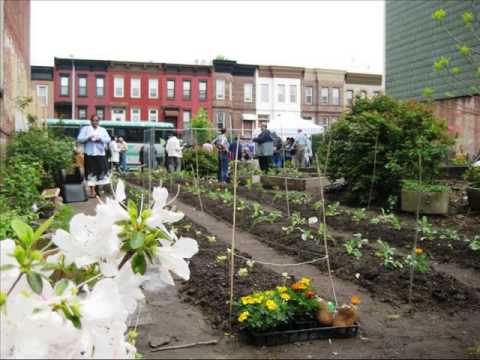 Food Is Free Project: Open-Source Front-Yard Community Gardens - Community Garden Ideas