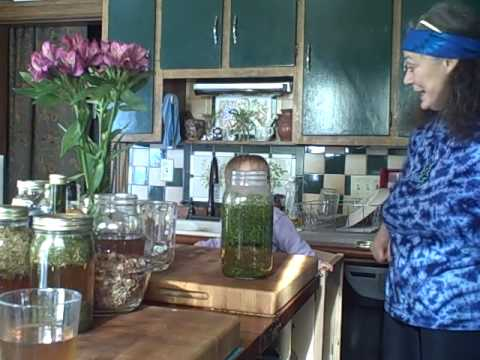nettle-infusion