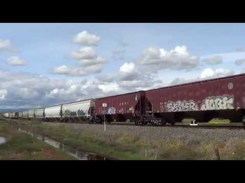 NWP's Petaluma Turn 4-6-15