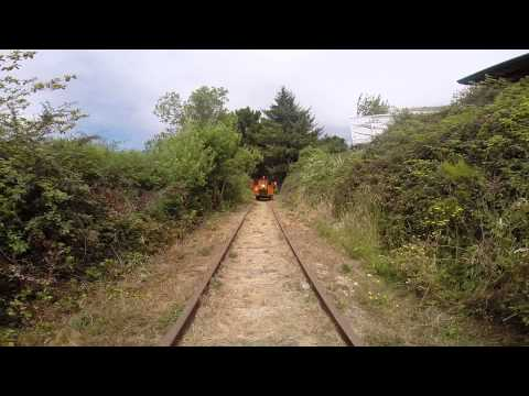Timber Heritage Speeder- Loleta Run Gopro