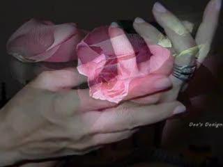 Quando o Amor toca o Coração