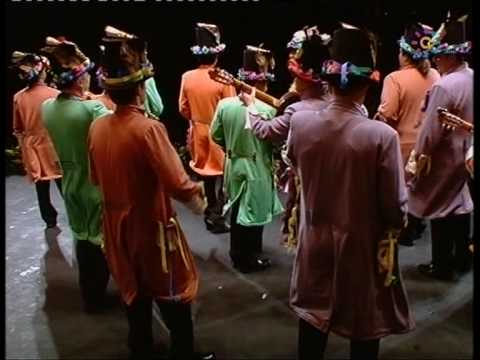 "Final Carnaval de Cádiz 2010: Comparsa ""Medio siglo"" - 1º PASODOBLE ""PROFESOR"""
