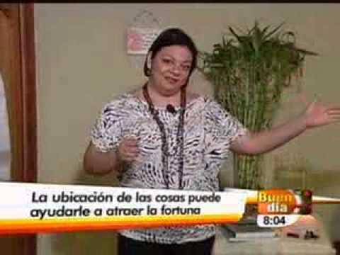 ELEMENTOS PARA LA PROSPERIDAD EN SU HOGAR-BUEN DIA-30-12-11.wmv