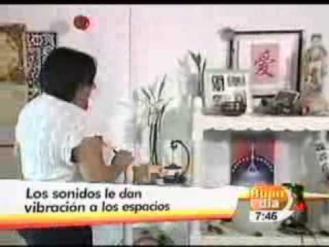 LA LIMPIEZA DE SU CASA POR MEDIO DEL SONIDO-BUEN DIA-29-12-11.wmv