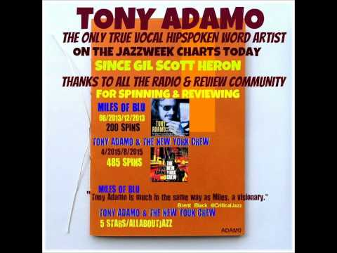 Tony Adamo - Gale Blowin' High