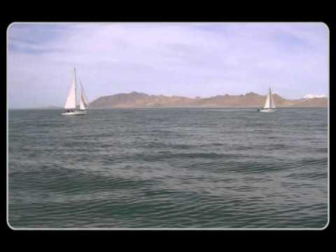 Random Acts Of Sailing #9 | Windpoet