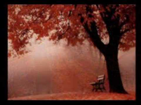 MEMORY LOVES YOU-SOPHIE ZELMANI