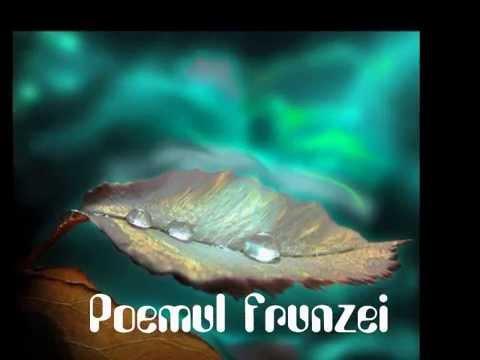 Poemul frunzei- versuri: Maria Ciobotariu