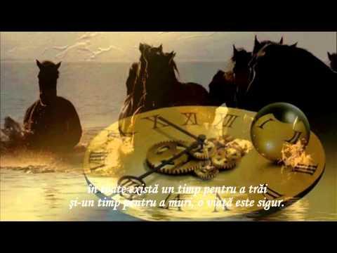 IRINA LUCIA MIHALCA - De unde vii și unde pleci?
