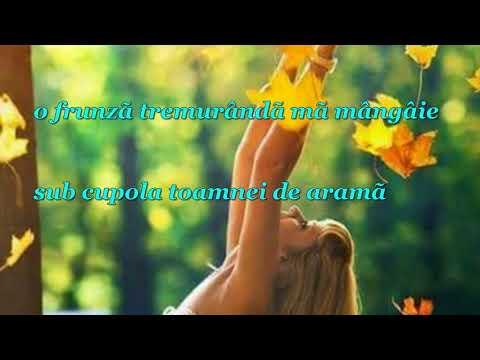 TOAMNÃ DE ARAMÃ - Autor - Maria Ciobotariu