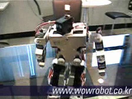 Servo Robô