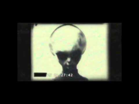 """Видео с живым инопланетянином из породы """"Серых"""