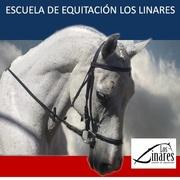 Escuela  Equitación Los Linares