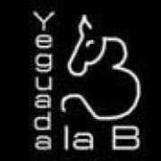 YeguadalaB
