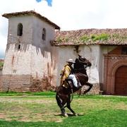 Albizú Segovia Torres