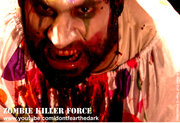 Zombie Killer Force