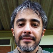 Albo Berro Rodrigues