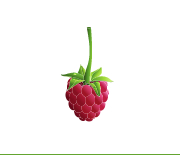 The Raspberry Bush Supper Club
