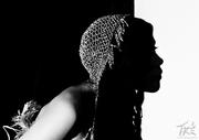 Silhouette © Tré Inc. 2011