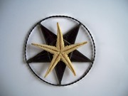 Black and White Pentacle.