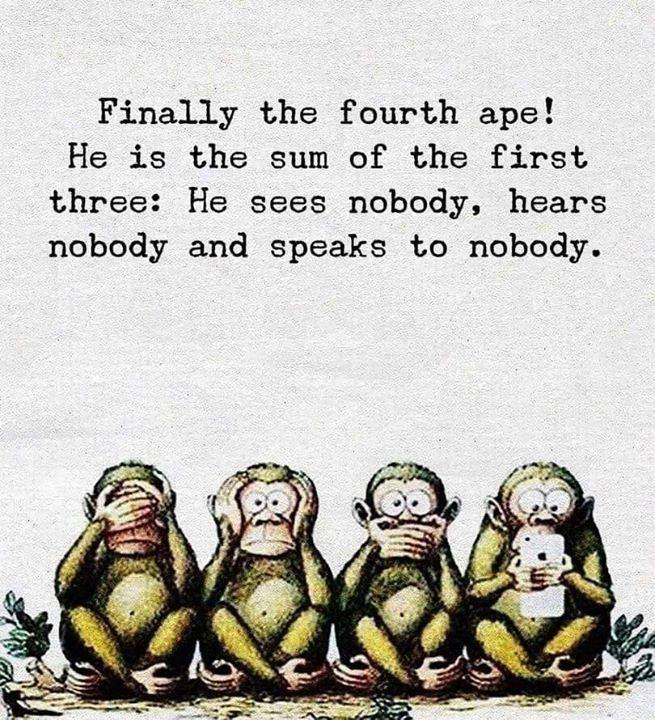 The fourth Ape