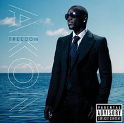 Akon's Album Release Party At Karu&Y in Miami